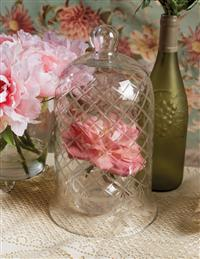 Elegant Etched Glass Cloche